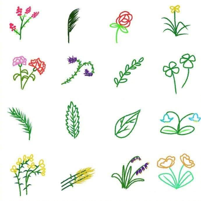 植物简笔画图片