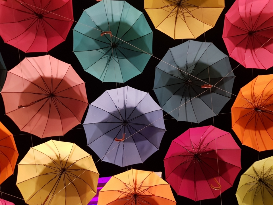 雨伞俯拍七彩五颜六色黑底