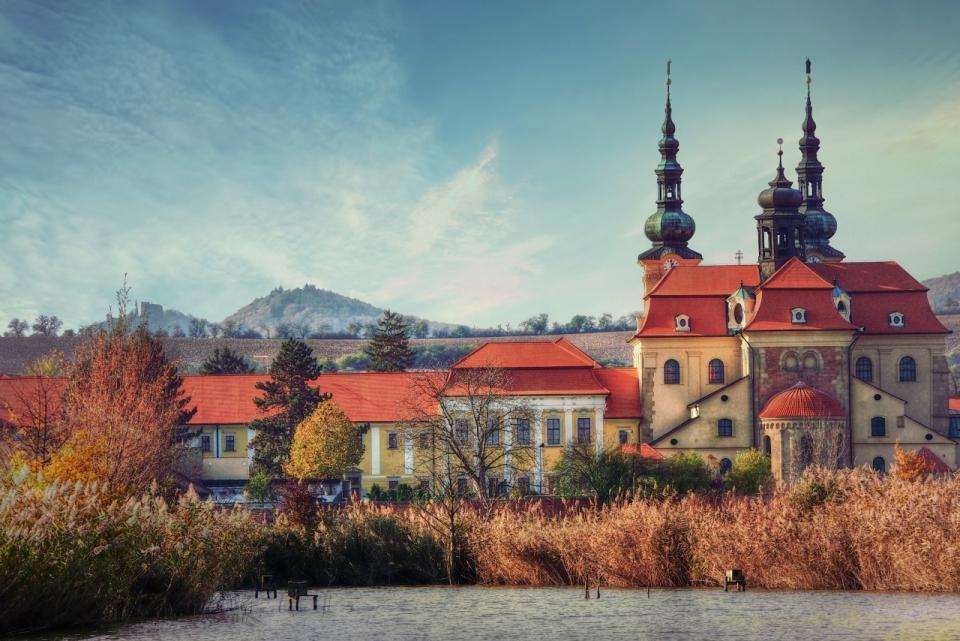 枯草后面红色屋顶欧洲小镇欧式建筑风光图片