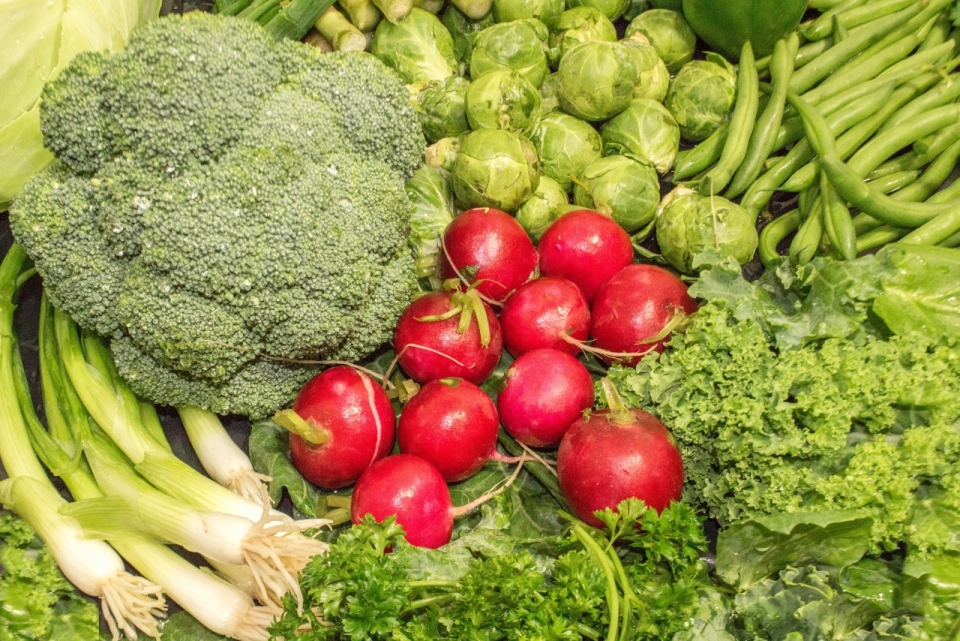 果园采摘新鲜瓜果蔬菜摆拍