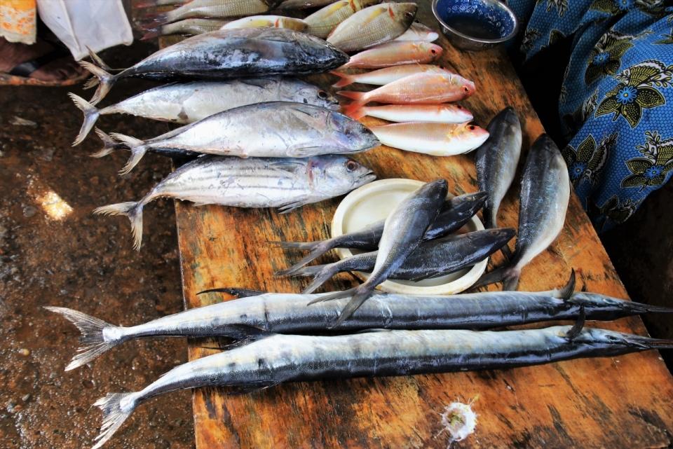 海鲜市场摊位新鲜海鱼特写图片
